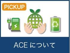 ACEについて